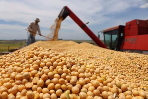 中美贸易战升级豆类或将保持在范围内